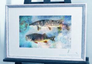 рыбы акварель