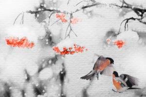рябина и снегири